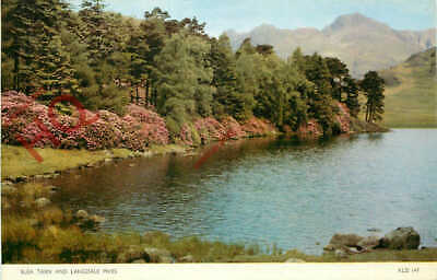 Picture Postcard:-English Lake District, Blea Tarn And Langdale Pikes