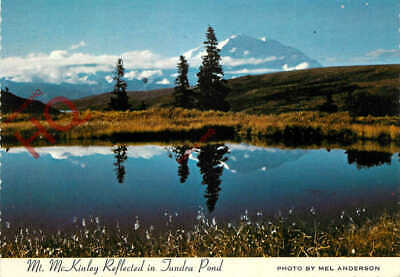 Picture Postcard>>Mt. Mckinley, Reflected In Tundra Pond