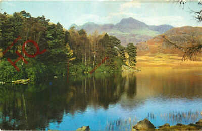 Picture Postcard>>English Lake District, Blea Tarn And Langdale Pikes