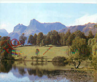 Postcard:-English Lake District, Langdale Pikes Reflected In Loughrigg Tarn