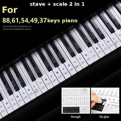 Piano Learner Stickers 88/61/54/49/37 Key Note Keyboard Decals Universal Clear A