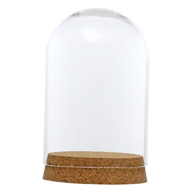 "Glass Cloche Bell Dome H-17/"" Open D-11.5/"" Collection Cover with Wood Base 1PC"