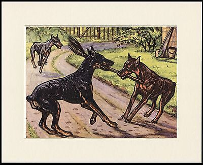 DOBERMAN PINSCHER OLD STYLE DOGS SEPIA DOG PRINT MOUNTED READY TO FRAME