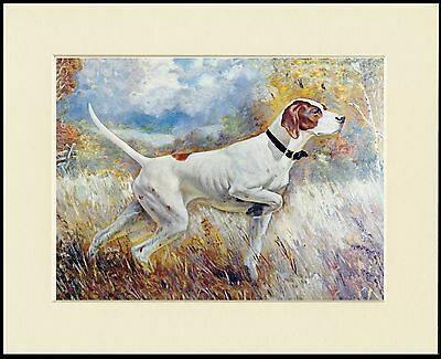 Pointer  Mounted Dog Print Ready To Frame