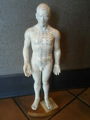 "Vintage Rubber Acupuncture Points Human Male Model Mannequin On Stand - 20"" Tall"