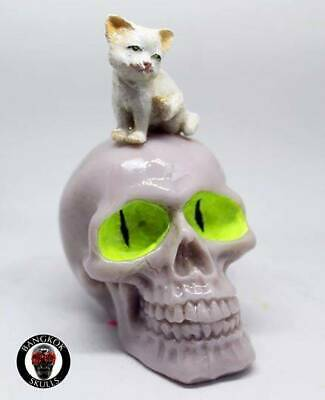 Bangkok Skull - [Kitten Grey] Home Decoration Hand Made &Painted