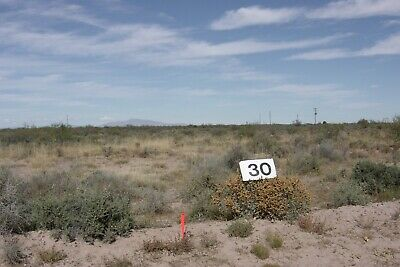 1 Acre vacant land in Luna County, New Mexico. Owner financing $2.995.00