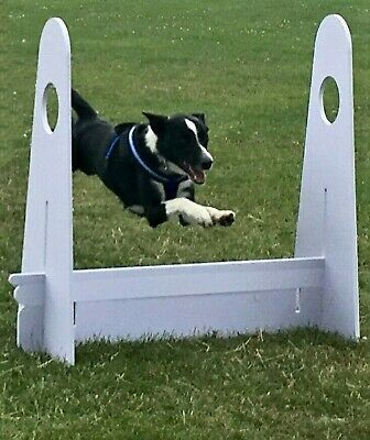 Set of 4 x FLYBALL FLY BALL DOG JUMPS Hurdles - Agility Obedience For BFA UKFL