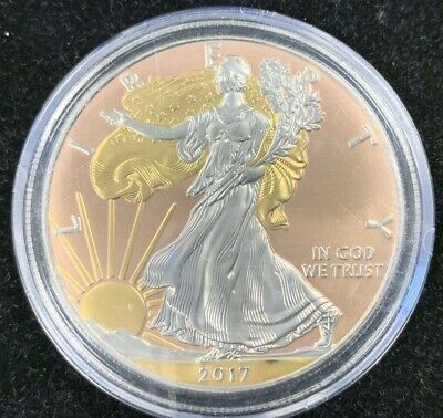 2017 American Silver Eagle ~ Platinum and Gold Highlighted ~ Free Shipping!