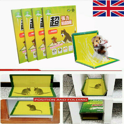 2-10 PCS Mouse Trap Board Household Rat Catcher Poison Free Ultra Sticky Strong