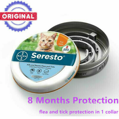 Bayer Seresto Flea and Tick Collar for Cats With A Safety Release Mechanism