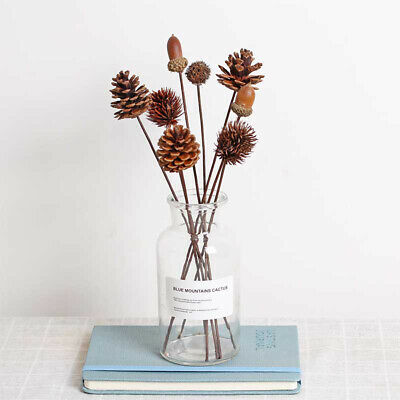 Dried Flower Natural Pine Cone Handmade Decorative Dried Flower Decors WH1