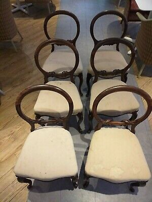 SET ENGLISH 6 Rosewood VICTORIAN carved shaped antique chairs chair cabriole leg