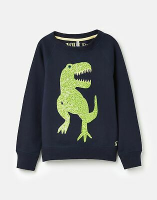 Joules  209304 Raglan Sweat in FRENCH NAVY
