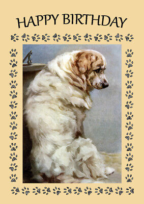 Pyrenean Mountain Dog Great Dog Birthday Greetings Note Card