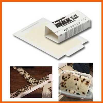 Scented Trapper Max Glue Traps 12 Glue Boards Trap Mouse Bugs Insects