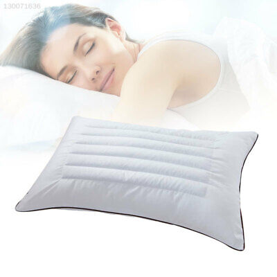 Buckwheat + Feather Silk Sleep Support Maternity Pillow Travel White Bed Pillow