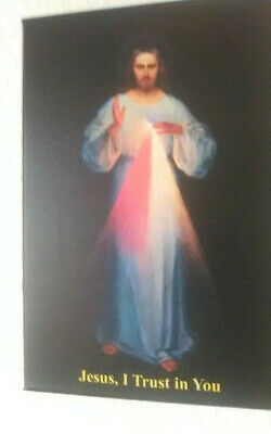 Divine Mercy Image on Canvas - great Quality 12 by 8 inches