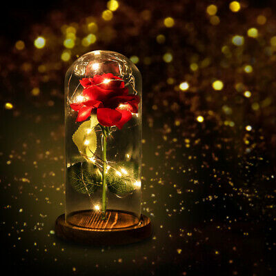 Beauty and the Beast Princess Light Up Enchanted Red Rose in Glass Dome Lamp