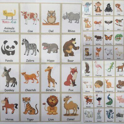 47 Animal Flash Card Set School Educational Picture Image Fun Word Kids Children