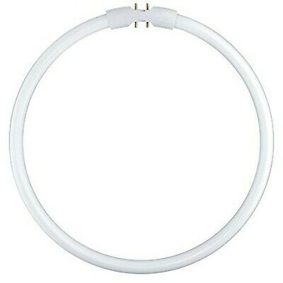 OSRAM L 13w//830 fluorescents chaud White Made in Italy EAC ce 3000 Kelvin 53 cm 53 cm
