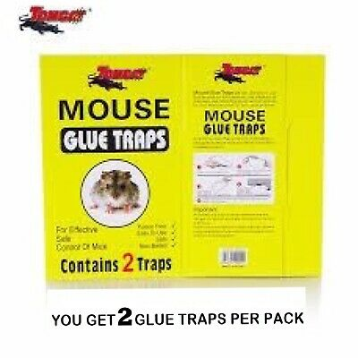 Mouse Rat Trap Sticky Board for Rat & Mice 2 Traps Per Pack