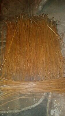 Longleaf pine needles from alabama for basket weaving...  dry 1 1/4 lbs