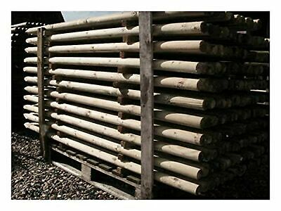 wood 20 1.2m tall x 50mm pressure treated wooden posts stakes with point 4ft