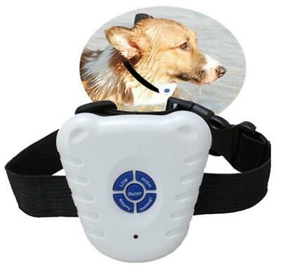 Pet Small Dog Rechargeable Anti Barking Collar IL1