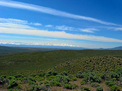 Rare 5 Acre Nevada Ranch In Ruby View Ranchos! On Power! Direct Road Access!