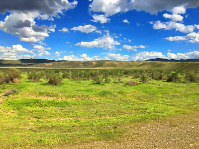 Rare 40 Acre Nevada Ranch! Easy Access! Near Paved Road! Blm Land! No Reserve!