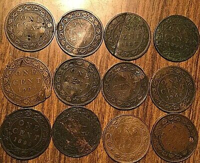 Lot Of 12 Canada Large Cents Lot Of 12 Coins