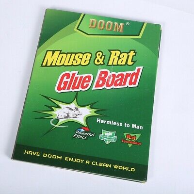 10 x Mice Glue Traps Board Sticky Trapper Rodent Mouse Rat Snake Bugs Safe Tools
