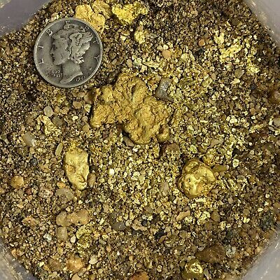 Approximately 20-35lbs US Gold Nugget Pay Dirt  Free Shipping Paydirt