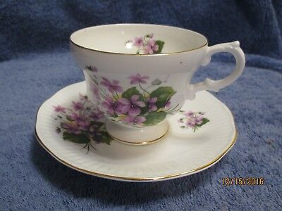 Rosina Bone China  Cup And Saucer Violets And Ivy Gold Trim Made In England
