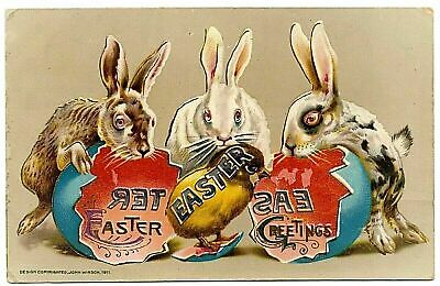 Winsch ~Trio of Bunny Rabbits with Chick Egg Antique Easter Postcard-p284