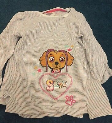 Stripey Paw Patrol Skye and Everest Girls Long Sleeved T-Shirt Size 3-4 years