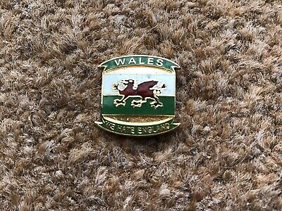 Wales Welsh Dragon Rugby Union Football We Hate England Supporters Pin Badge