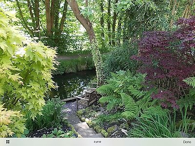 Holiday Cottage South Wales Near Waterfalls & Brecon Beacons 8th-15th August