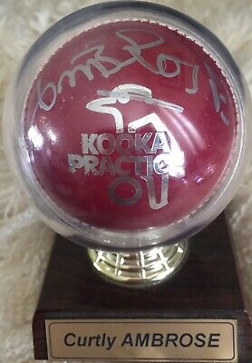 Sir Curtly Ambrose SIGNED Kookaburra Cricket Ball w Stand. West Indies. Walsh.