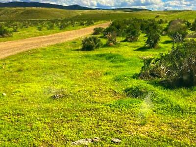 53.24 Acre West Texas Ranch With Your Own Addres! Lot 3 Gunsight Ranch. Rare !