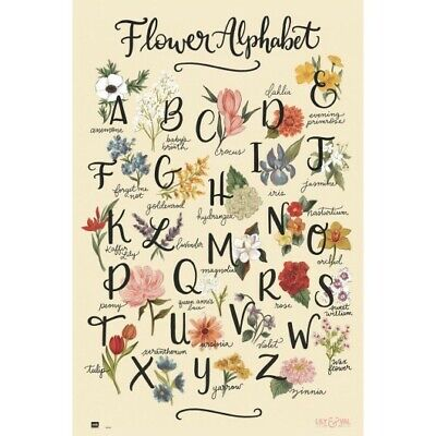 FLOWER ALPHABET - LILY & VAL POSTER 24x36 - 3529