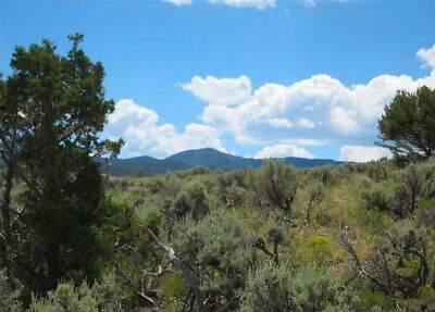 Beautiful 5 Acre Colorado Mountain Ranch! $395 Down! Tress! Direct Road Access!