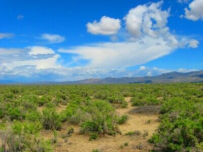 40 Acre Nevada Ranch! Easy Access! Mountain Views! Adjoins Blm Land! No Reserve!