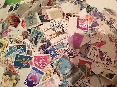 unsorted  charity collected World and Commonwealth stamps off paper