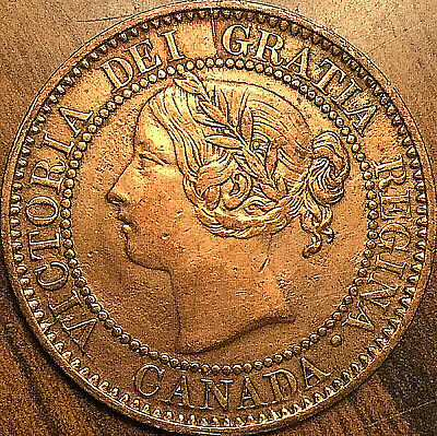 1859 CANADA LARGE CENT COIN LARGE 1 CENT PENNY - Fantastic example! - Cleaned