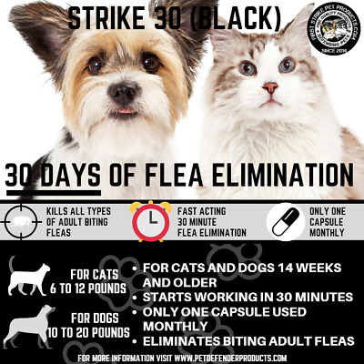Super Flea killer for cats and small Dogs one use lasts up to 30 days! 12 uses