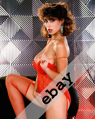 Adult film star Christy Canyon sexy 8x10 PHOTO #2148
