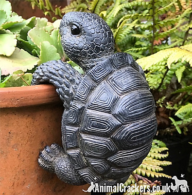 TORTOISE POT HANGER novelty resin garden ornament decoration reptile lover gift