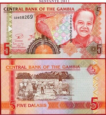 GAMBIA   -    5 DALASIS nd 2006/13  - P 25c  -   FDS / UNC